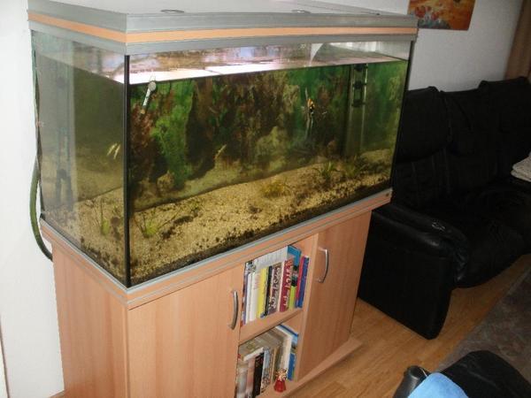 beleuchtung aquarium kleinanzeigen tiermarkt deine. Black Bedroom Furniture Sets. Home Design Ideas