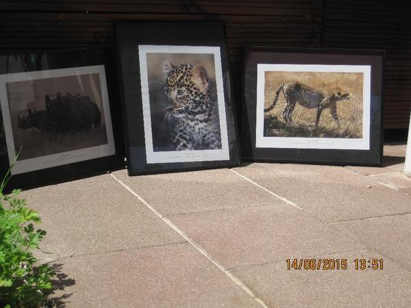 afrika tier kunstdrucke inkl rahmen im 3er set in kalchreuth kunst gem lde plastik kaufen. Black Bedroom Furniture Sets. Home Design Ideas