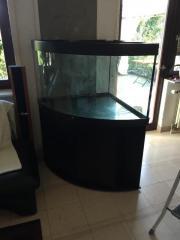 Aquaium 350 L