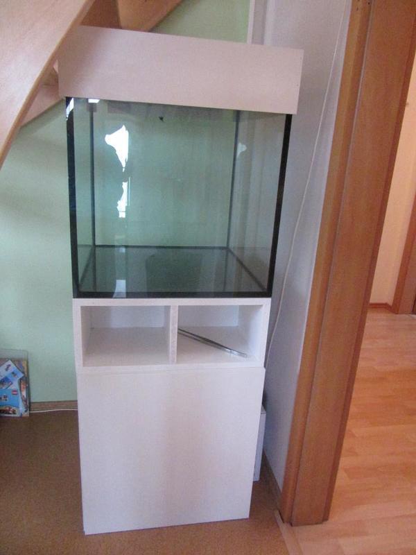 Aquarium 60x60x60 komplett sofort einsatzbereit in for Schrank 60x60x60