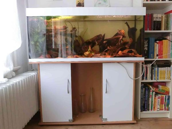 aquarium fische zubeh r in hamburg kaufen bei deine. Black Bedroom Furniture Sets. Home Design Ideas