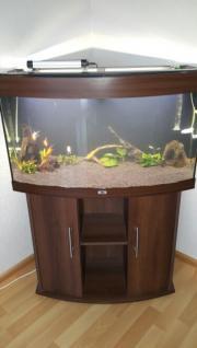 aquarium juwel vision180