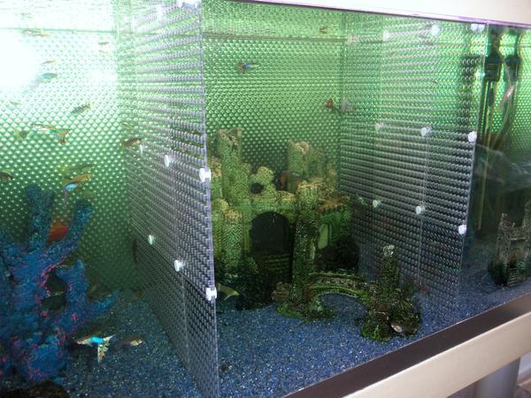 kleinanzeigen aquarium universal trennwand f r aquarien fische kampffische jungfische aquarium. Black Bedroom Furniture Sets. Home Design Ideas