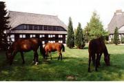 Aulbach-Immobilien.de,