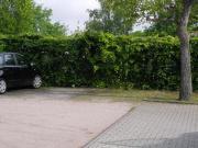 Aussen-Parkplatz in