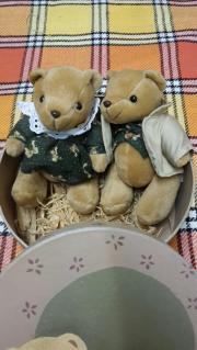 Bärenpaar