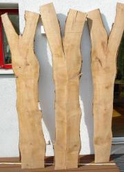 Baumscheiben längs Kirschbaum