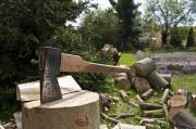 Brennholz und Gartenservice
