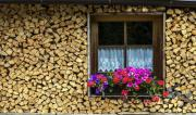 Brennholz, weich und