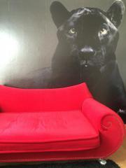 bretz sessel kaufen gebraucht und g nstig. Black Bedroom Furniture Sets. Home Design Ideas
