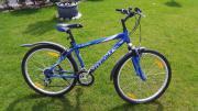 Fahrrad Giant GSR