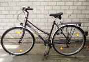 Fahrrad Trekkingrad Damenrad