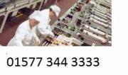 Fertigungslinienmitarbeiter aus Tschechien