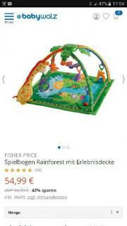 Fisher Price Erlebnissdecke