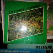 französisch kinderbucher und