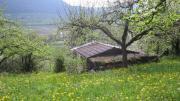 Freizeitgrundstück mit Hütte