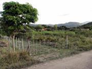 Fruchtbares Grundstück 7200m²