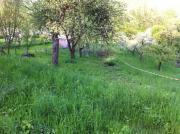 Gartengrundstück(e) Kernen-