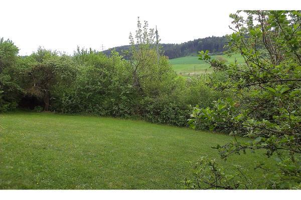 gepflegter garten in wilhermsdorf 30km von n rnberg 22km. Black Bedroom Furniture Sets. Home Design Ideas