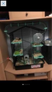 Hamsterkäfig mit Hamster