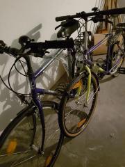 Herrenrad 2× Siehe