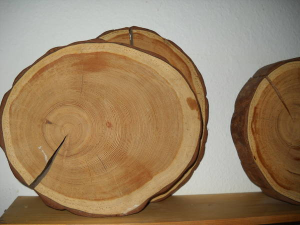 Partylite Kerzenständer Holz ~ Holz Scheiben, massiv in Mannheim  Dekoartikel kaufen und verkaufen