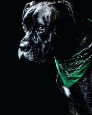Hundefreundliche Vermieter in