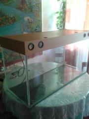 i sell aquarium