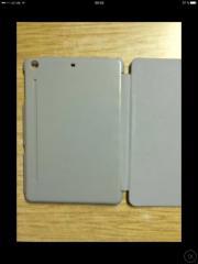 iPad Mini 1