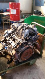 Jaguar Motor, Motor,