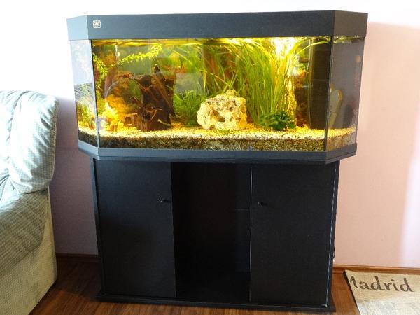 aquarium deko neu und gebraucht kaufen bei. Black Bedroom Furniture Sets. Home Design Ideas