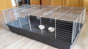 Käfig für Meerschweinchen