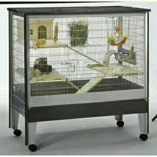 k fig f r ratten oder degus in korschenbroich zubeh r f r haustiere kaufen und verkaufen ber. Black Bedroom Furniture Sets. Home Design Ideas