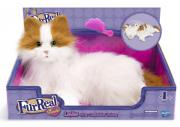 Katze Lulu - Fur