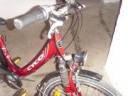 Kinder fahrrad 24