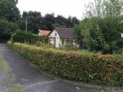 Kleingarten im KGV (