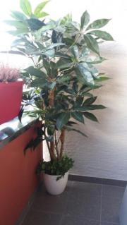 Kunst Pflanze
