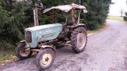 MAN Oldtimer Traktor