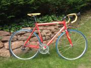Marin Rennrad zu