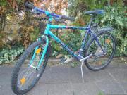 Mountainbike C AT
