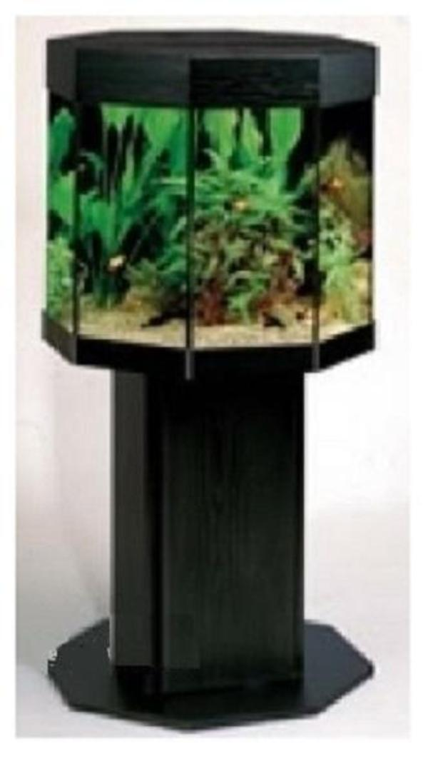 mp kristall aquarium 8 eck schwarz 160l m viel zubeh r np 600eur in frankfurt fische. Black Bedroom Furniture Sets. Home Design Ideas