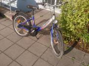 Pegasus Fahrrad++