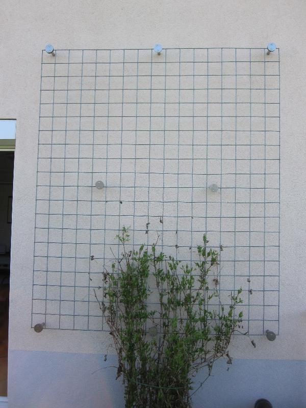 rankhilfe f r pflanzen sonstiges f r den garten balkon. Black Bedroom Furniture Sets. Home Design Ideas