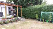 Schöner Garten in
