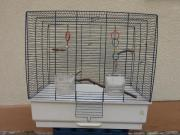 Schöner Vogelkäfig für