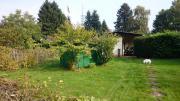 Schrebergarten (Kleingarten) in