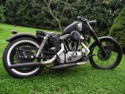 Suche Harley Davidson