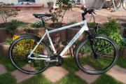 Trekkingrad Herrenrad Triumph,