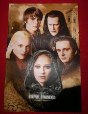 Twilight Poster New