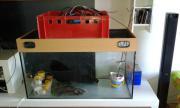 verkaufe gebrauchtes aquarium